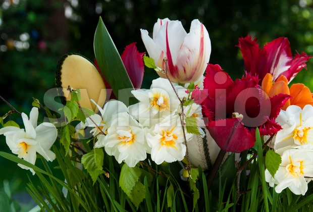Bouquet of spring flowers (daffodils and tulips) with Easter eggs