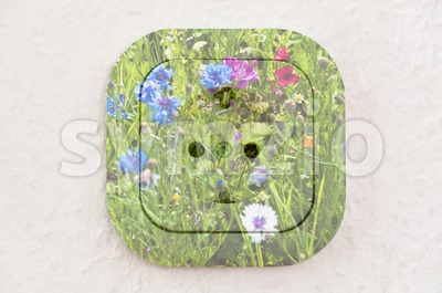 Conceptual: Flowers over Power Outlet With Path Stock Photo