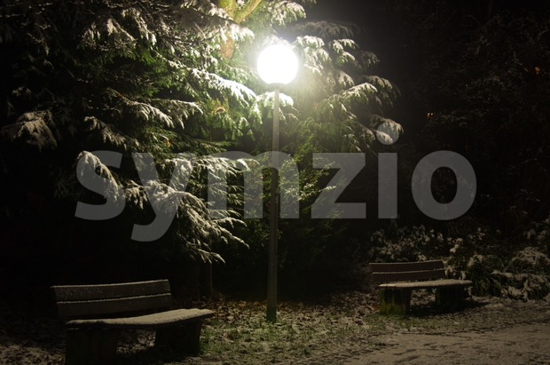 Nightly park scene Stock Photo