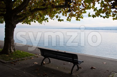 Lake Constance in fall Stock Photo