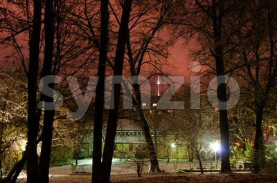 Snowy park in winter Stock Photo