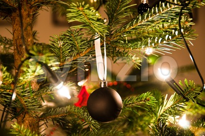 Christmas Ball Hanging From Christmas Tree Stock Photo