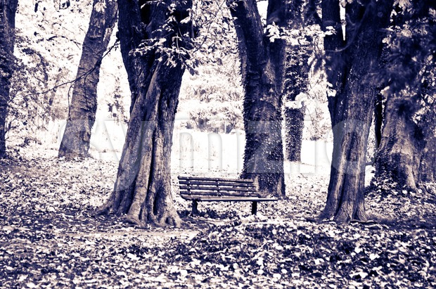Fall scenery in the park with bench, trees and heaps of fallen leaves - old bluish make over