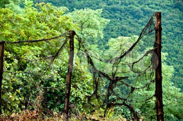 Rotten Fence Stock Photo