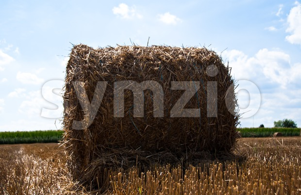 Hay bale on a summer stubble field after harvest with a beautiful cloudy sky