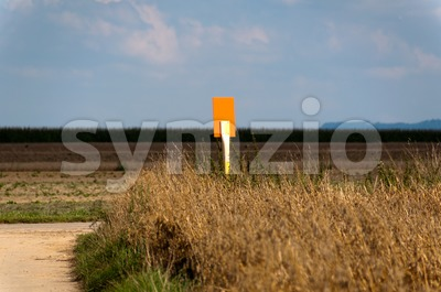 Field scenery with sign Stock Photo