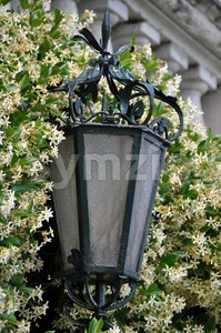 Decorative lamp Stock Photo