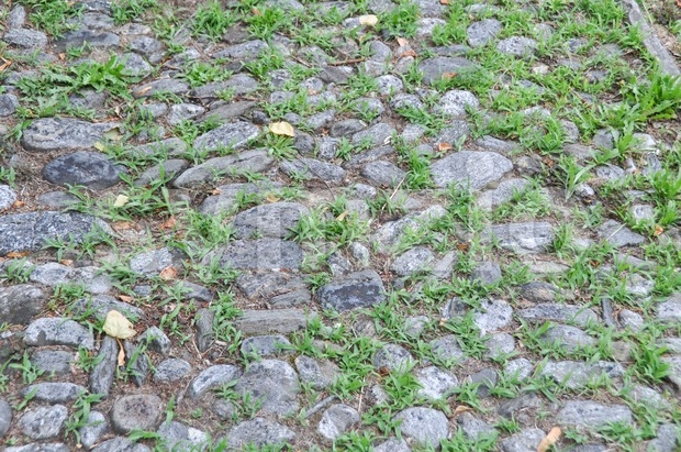 Closeup of a very old walkway made of found stones with grass