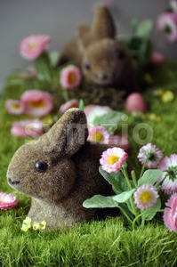 Easter decoration Stock Photo