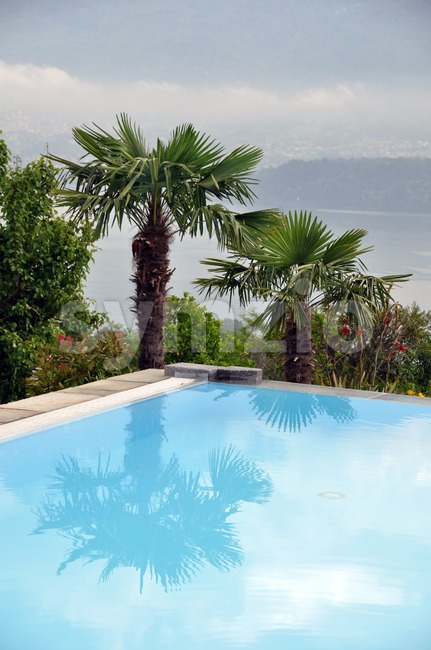 Pool and palms with lake Stock Photo