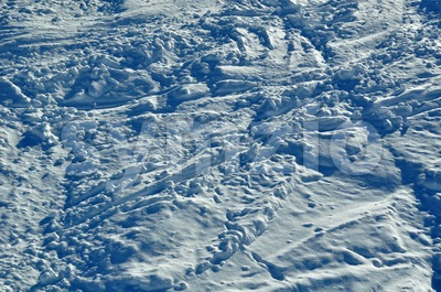 Snow tracks Stock Photo