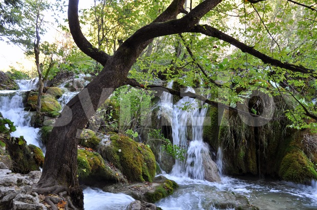 Small river with waterfalls located in Plitvice National Park, Croatia