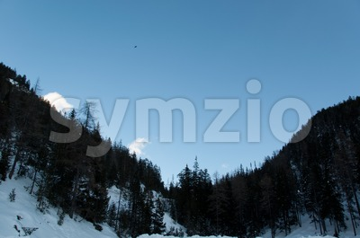 Mountain scenario with trees and snow Stock Photo
