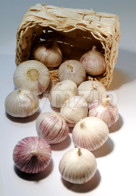 Several garlic cloves that have rolled out of their basket photographed on white background