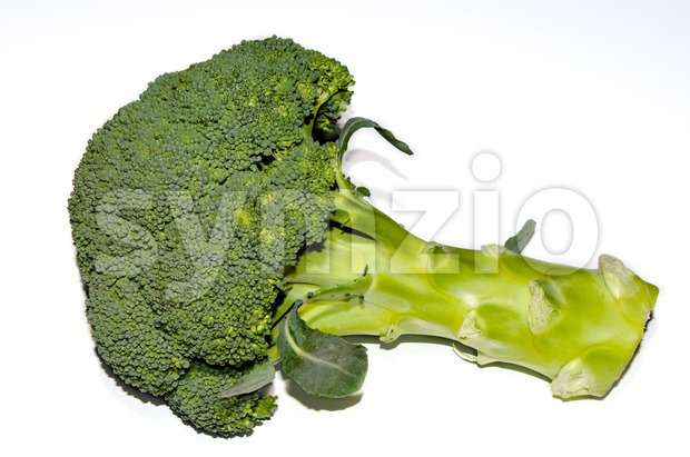 Fresh raw green broccoli Stock Photo
