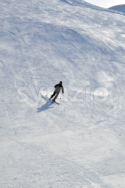 Skier in powder snow Stock Photo