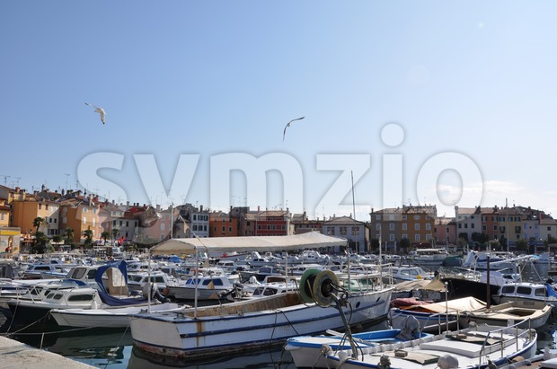 Numerous small boats waiting in Croatian marina of Rovinj with seagulls flying in the sky