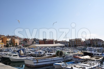 Colourful Croatian  Marina with seagulls Stock Photo