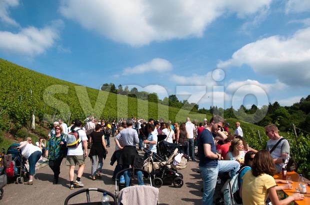 Wine Tour in Obertürkheim near Stuttgart, Germany Stock Photo
