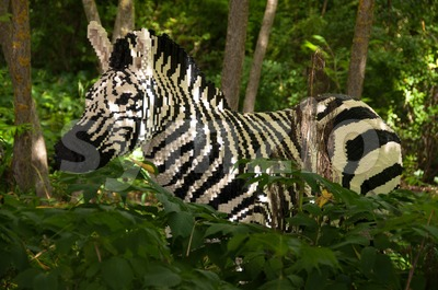 Zebra built out of Lego bricks Stock Photo