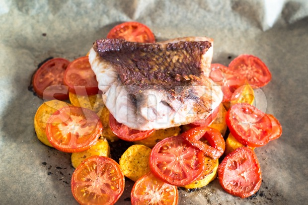 Red Snapper Filet Stock Photo