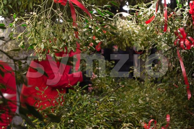 Mistletoe stand on Christmas market Stock Photo