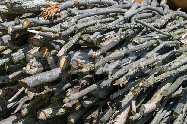 Woodpile - stacked beech timber logs, fuel for fire