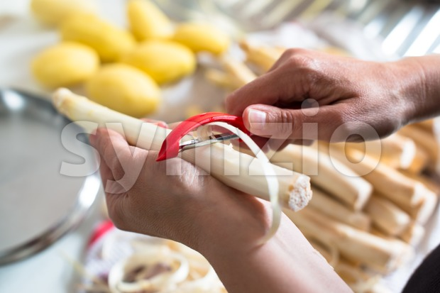 Peeling white asparagus Stock Photo