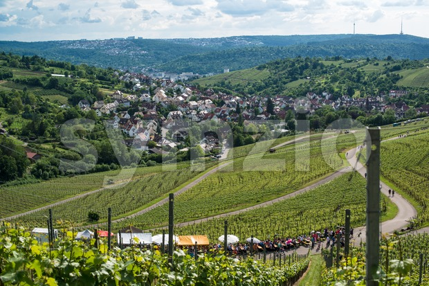 Wine Tour in Uhlbach near Stuttgart, Germany Stock Photo