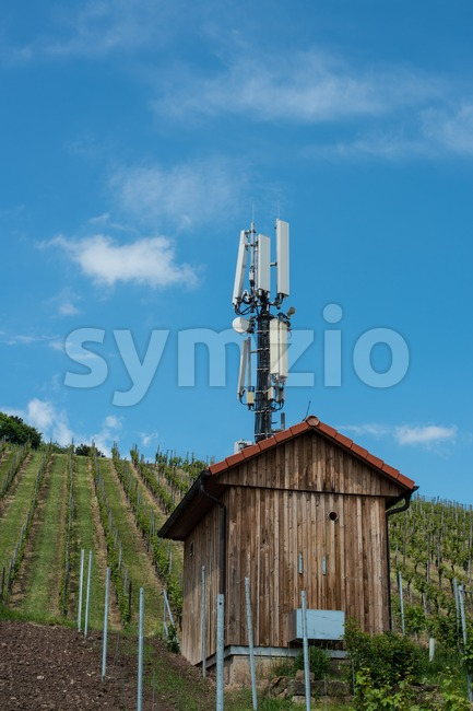 Telecommunication mast in a vineyard Stock Photo
