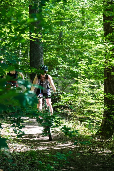 A group of mountainbikers in the forest Stock Photo