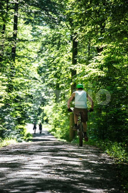 STUTTGART, GERMANY - June 16, 2013: A young man is riding a mountainbike in the forest between Botnang and the ...