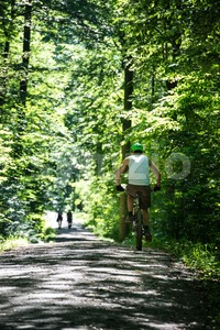 Young man mountainbiking in the forest Stock Photo