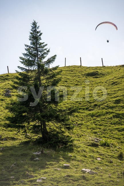 Paraglider flying over the Bavarian Alps Stock Photo