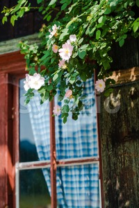 Idyllic Bavarian alpine cottage Stock Photo
