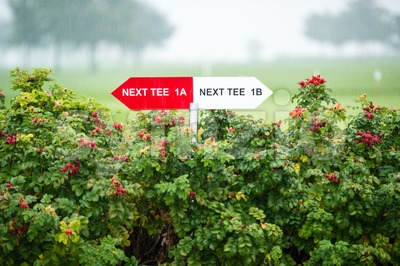 Next tee sign Stock Photo