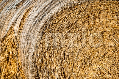 Bales of hay in the fields in summer time harvest Stock Photo