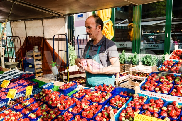 Greengrocer at the old Fish Market by the harbor in Hamburg, Germany Stock Photo