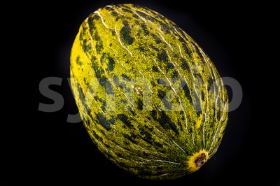 Yellow sugar melon Stock Photo