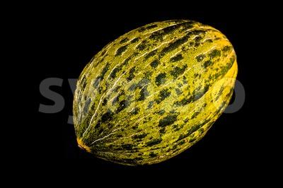 Yellow sugar melon Stock Photo