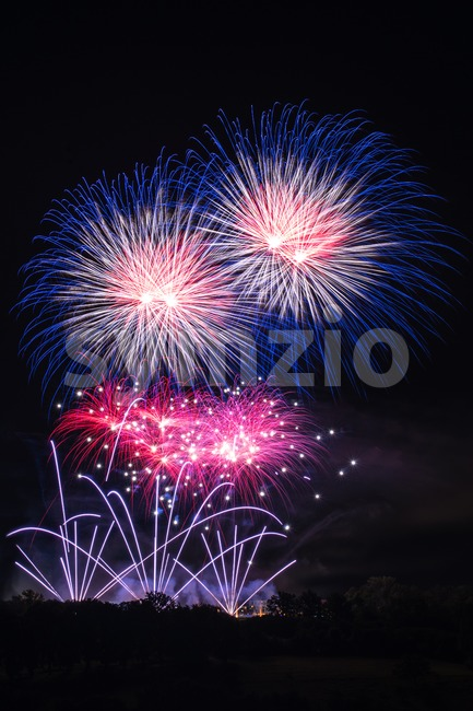 Beautiful colorfuland professional fireworks with night sky and trees at the bottom