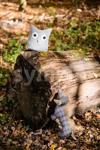 Soft toy dog is chasing an owl in autumn forest Stock Photo