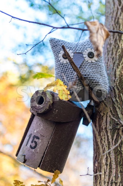 Soft toy owl is placed in autumn forest Stock Photo