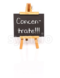 Concentrate. Blackboard with text and easel. Stock Photo