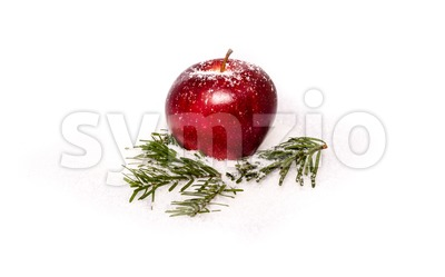 Red apple with fir branches in snow Stock Photo