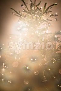 Myterious Christmas tree Stock Photo