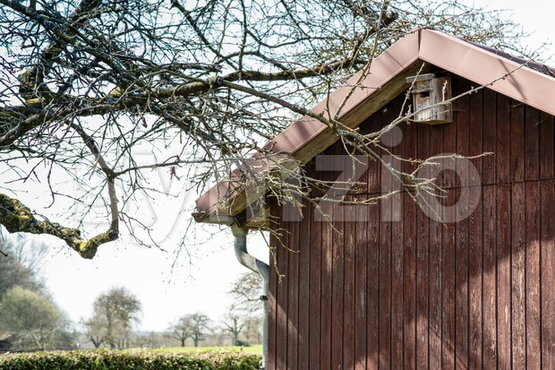 allotment hut with garden in spring Stock Photo