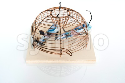 Conceptual: Euro Bills trapped in mouse-trap Stock Photo
