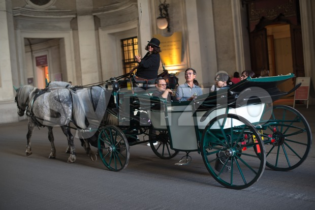 Horses and carriage, Vienna Stock Photo