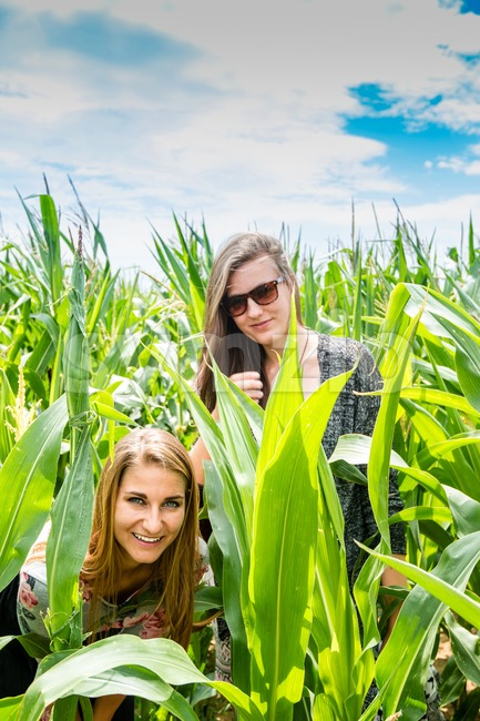 Two young girls hiding in a green cornfield Stock Photo
